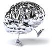 Cerveau chrome