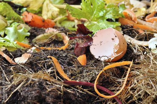 divers déchets pour compostage