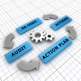 Four steps of the audit process in order to audit a company poster