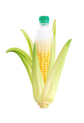 Concept - Bio plastic bottle made by corn
