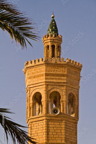 Foto op Aluminium Tunesië Mosque. Tunis. Mahdia