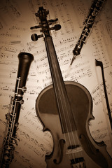 Vintage musical instrument retro.