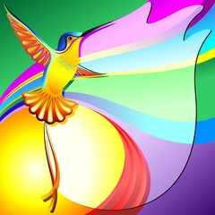 Colibri Sfondo Colori-Hummingbird Colors Background-Vector