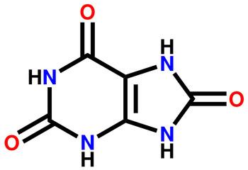Uric acid structural formula