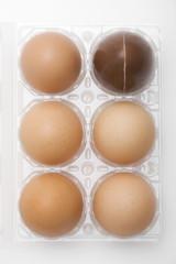 Uova di cioccolato e uova intere Pasqua