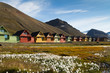 Leinwandbild Motiv Longyearbyen