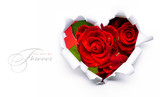 Fototapety Art banner design of red roses and the paper heart on Valentine