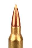 hunting bullet poster
