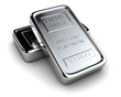 Two platinum ingots - 38554076