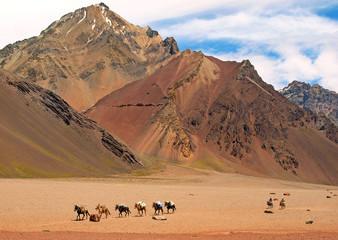Naturlandschaft in Argentinien, Südamerika.