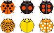 テントウムシ6種