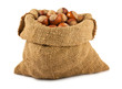 Canvas bag with ripe hazelnuts