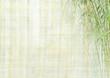 Fototapeten,bambus,urwald,chinese,hintergrund