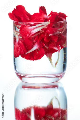 花の浮くタンブラー