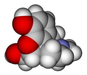 Morphine space filling molecular model