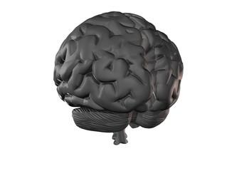 silver brain (back)