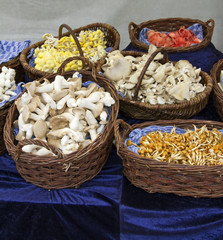 Mushrooms at market