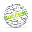 Success Sphere