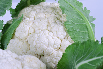 Fresh Cauliflower Vegetable Close up