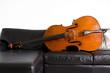Contrabbasso, strumento ad arco, su divano in pelle nera