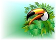 Tucano Sfondo Giungla-Toucan on Jungle Background-Vector