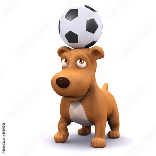 3d Dog balances a football on his head