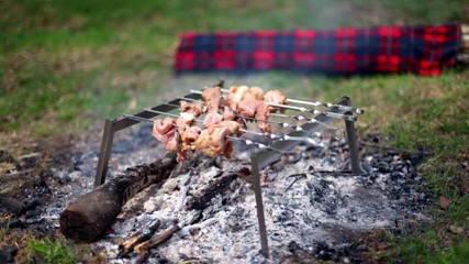 Skewers with kebab on embers at grass