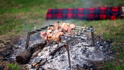 Skewers with kebab on embers at grass