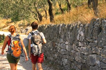 Escursionisti nell'uliveto