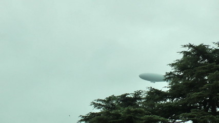Blimp crossing above trees