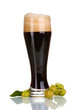 dark beer in a glass and green hop isolated on white