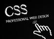 CSS - Professional Web Design