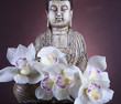 Buddha statue with orchid flower