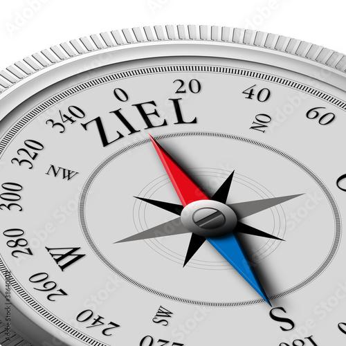 Kompass-Ziel