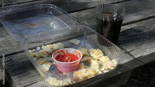 Eating Chips On Picnic Table Taking Drink