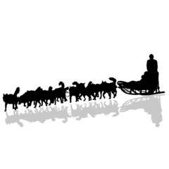 dogs pulling a sled in black vector silhouette