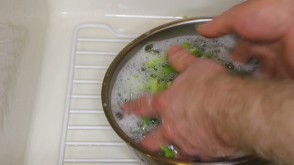 Hands Washing Celery in a Bowl of Soapy Water in the Sink