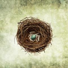 nest egg print