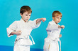 two boys make karate exercises