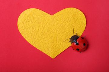 heart with ladybug