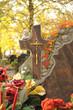 Friedhof 8