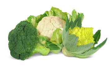 Gemüse 298