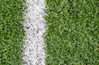 Fake grass inside indoor football field