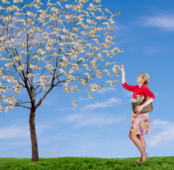 a woman reaching up picking money off a tree