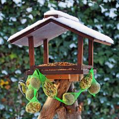 Kohlmeise am Vogelhäuschen