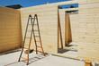 Ladder and Doorway