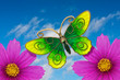 Playful and colorful summer card with flowers and  a butterfly