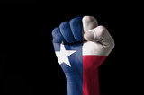 Fist painted in colors of us state of texas flag - 38710486