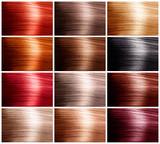 Fototapety Hair Colors Set. Tints