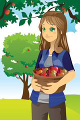 Apple farmer
